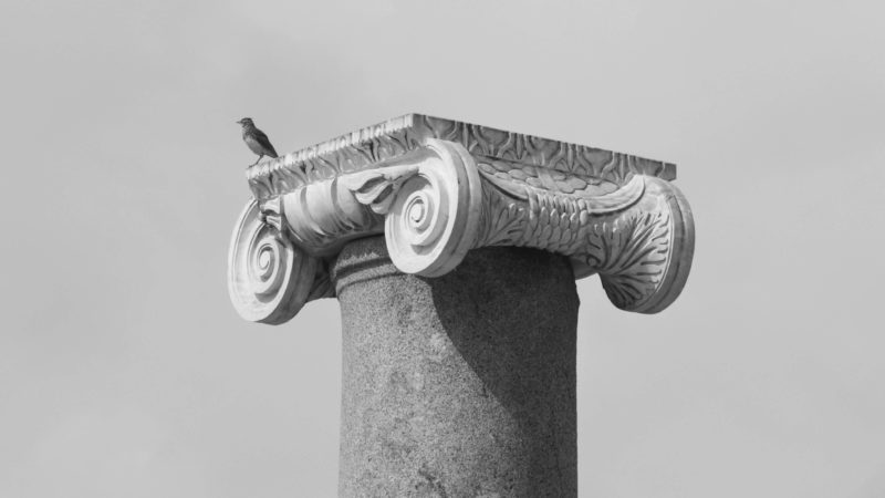 A bird standing on an historic Roman Column Head